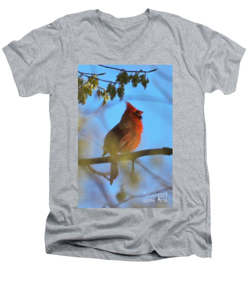 Northern Cardinal Men's V-Neck T-Shirt