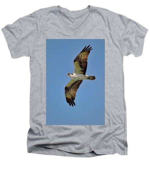 Osprey Above Men's V-Neck T-Shirt