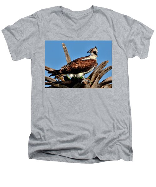 Osprey On A Windy Morning Men's V-Neck T-Shirt