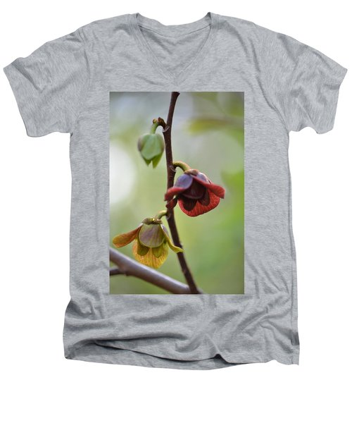 Men's V-Neck T-Shirt featuring the photograph Paw-paw Flowers by JD Grimes