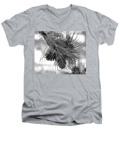 Pine Cones Men's V-Neck T-Shirt