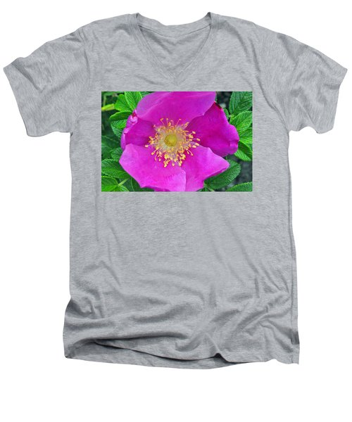 Pink Portulaca Men's V-Neck T-Shirt by Tikvah's Hope