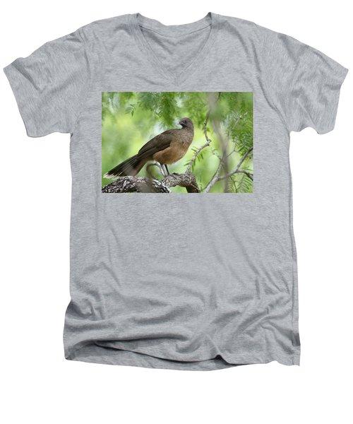 Plain Chachalaca  Men's V-Neck T-Shirt