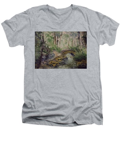 Pleasant Stroll Men's V-Neck T-Shirt