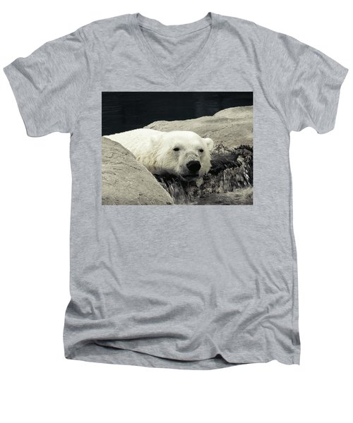 Polar Relaxation Men's V-Neck T-Shirt
