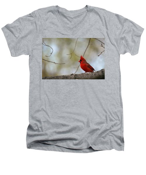 Pop Of Color Men's V-Neck T-Shirt
