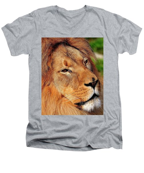 Portrait Of The King Men's V-Neck T-Shirt