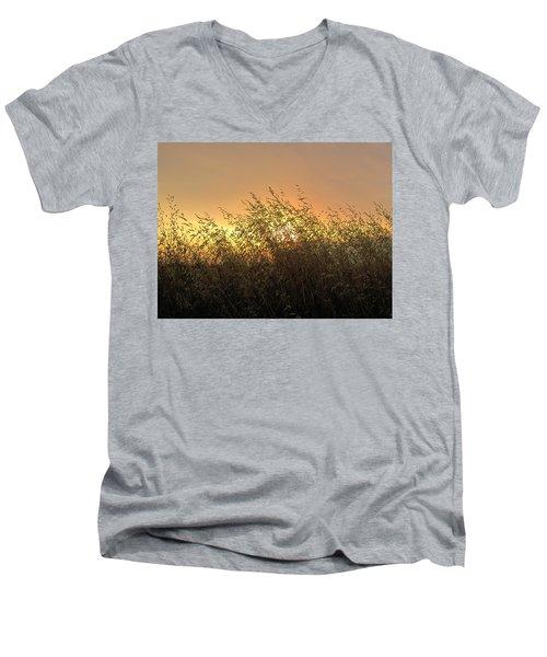 Prairie Dusk Men's V-Neck T-Shirt