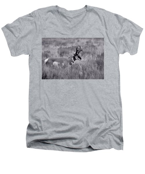 Men's V-Neck T-Shirt featuring the photograph Pronghorn  by Eric Tressler