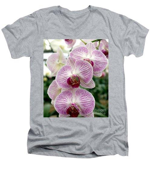 Men's V-Neck T-Shirt featuring the photograph Purple Orchids by Debbie Hart