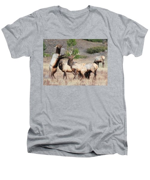 Men's V-Neck T-Shirt featuring the photograph Put Up Your Dukes by Shane Bechler