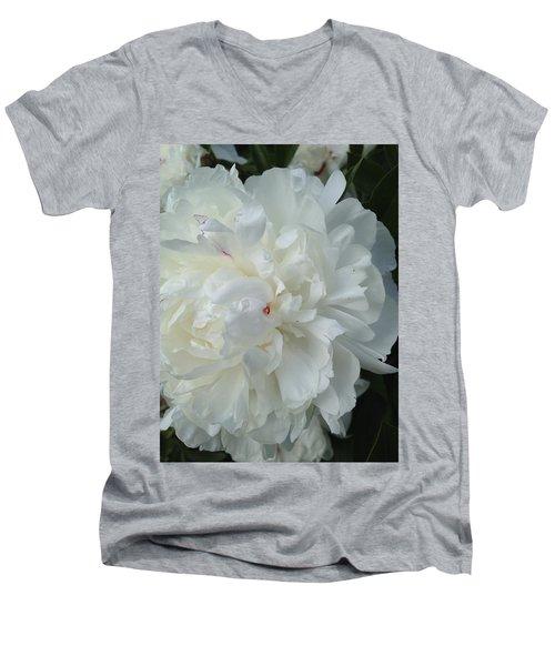 Rarely Perfect Men's V-Neck T-Shirt