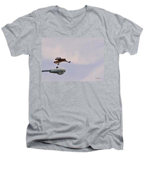Red-tailed Hawk In Flight Men's V-Neck T-Shirt