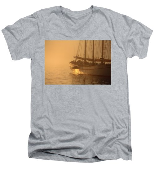 Resting In The Morning Sun Men's V-Neck T-Shirt