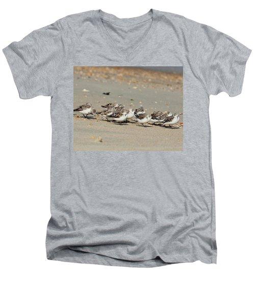 Resting Sandpipers Men's V-Neck T-Shirt