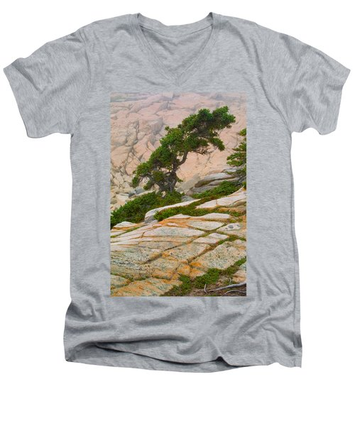 Schoodic Cliffs Men's V-Neck T-Shirt by Brent L Ander