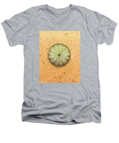 Sea Urchin Men's V-Neck T-Shirt by Katherine Young-Beck