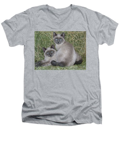 Siamese Haystack Men's V-Neck T-Shirt