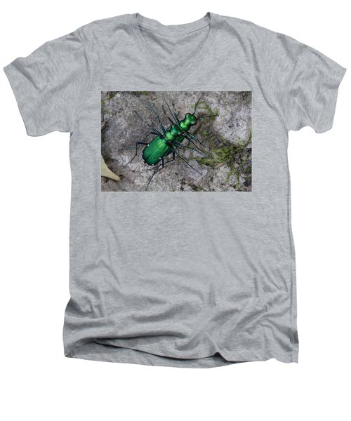 Six-spotted Tiger Beetles Copulating Men's V-Neck T-Shirt