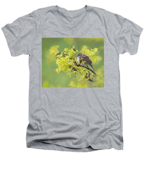 Spring Reverie Men's V-Neck T-Shirt