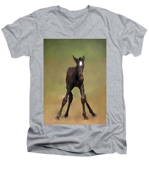 Standing On All Fours Men's V-Neck T-Shirt
