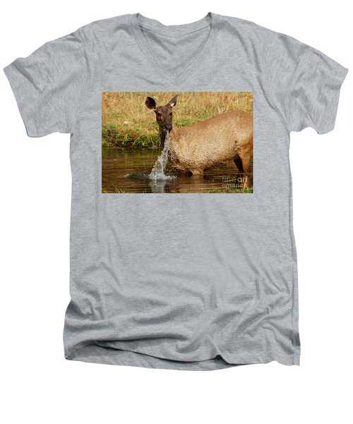 Men's V-Neck T-Shirt featuring the photograph Startled by Fotosas Photography