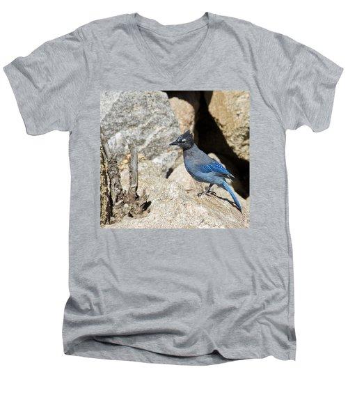 Stellers Jay Men's V-Neck T-Shirt