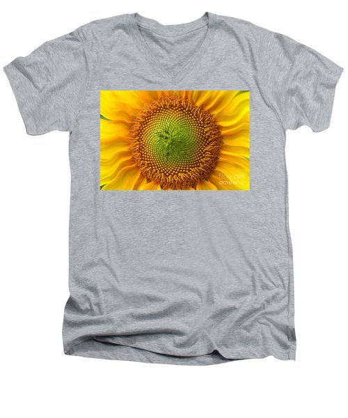 Sunflower Fantasy Men's V-Neck T-Shirt by Benanne Stiens