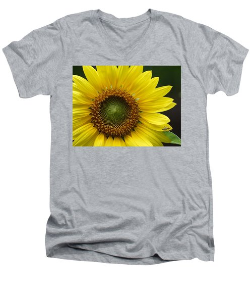 Men's V-Neck T-Shirt featuring the photograph Sunflower With Insect by Daniel Reed