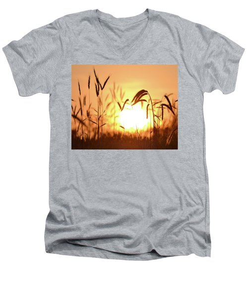Sunset Rye IIi Men's V-Neck T-Shirt