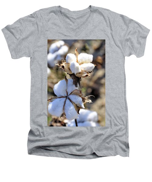 Men's V-Neck T-Shirt featuring the photograph The Cotton Is Ready by Jan Amiss Photography