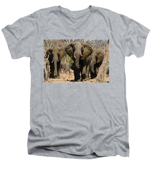 The Herd Men's V-Neck T-Shirt