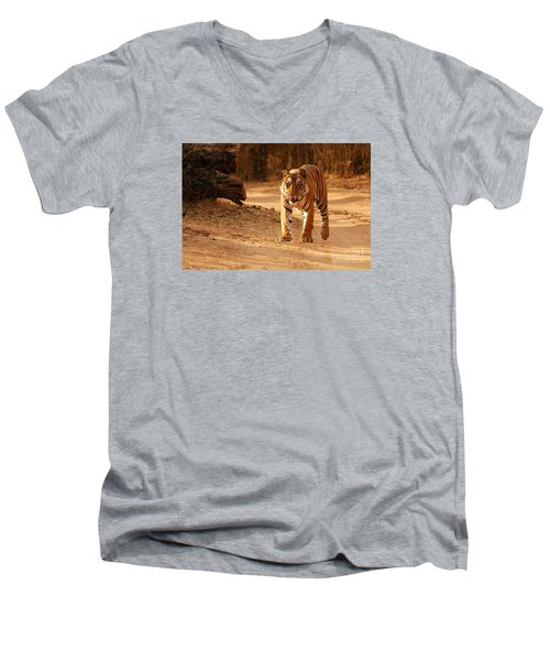 The Royal Bengal Tiger Men's V-Neck T-Shirt by Fotosas Photography