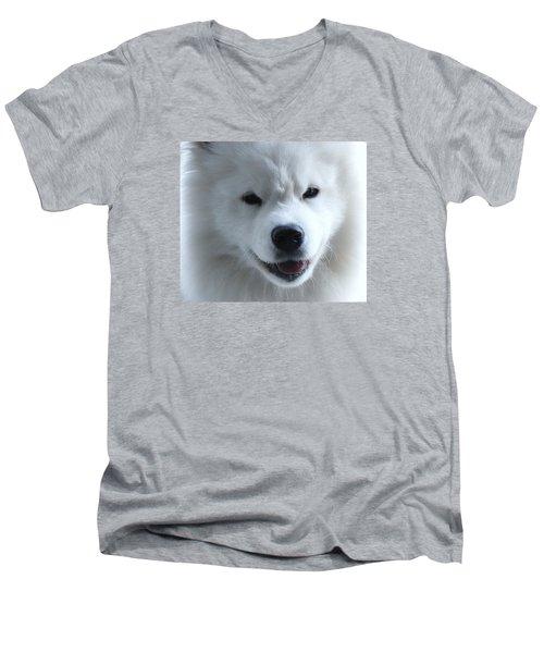 The Samoyed Men's V-Neck T-Shirt by Lisa  DiFruscio