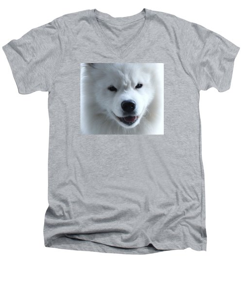 Smile Of The Arctic Life Men's V-Neck T-Shirt