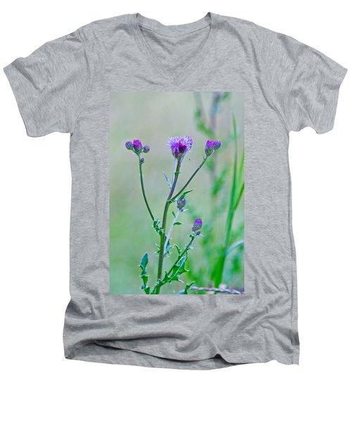 Thistledown Pastel Passion Men's V-Neck T-Shirt