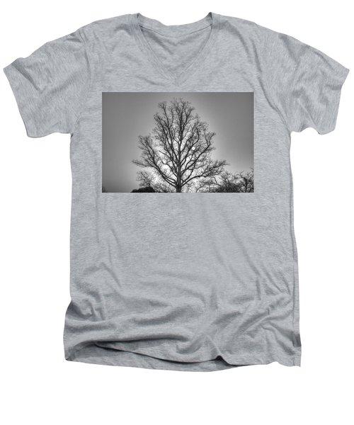 Through The Boughs Bw Men's V-Neck T-Shirt by Dan Stone
