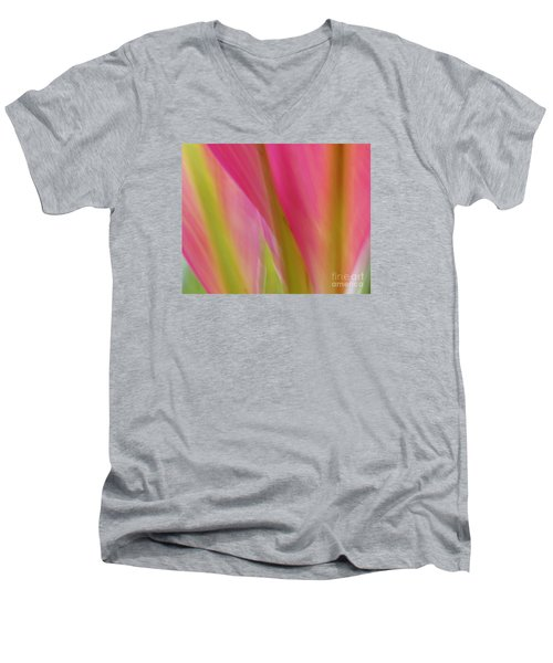 Men's V-Neck T-Shirt featuring the photograph Ti Leaves by Ranjini Kandasamy