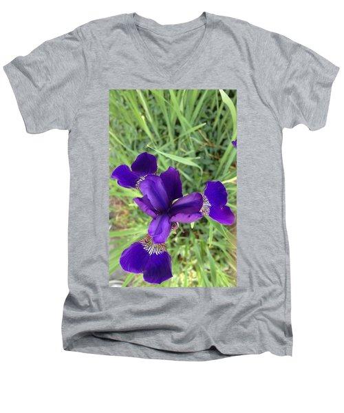 Velvet Royale Men's V-Neck T-Shirt