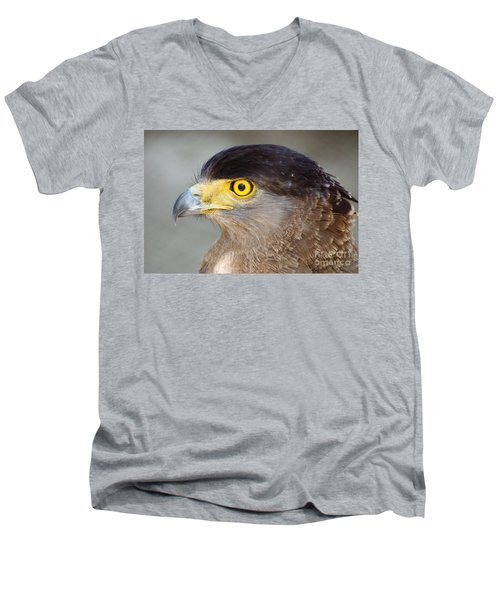 Men's V-Neck T-Shirt featuring the photograph Waiting For Prey  by Fotosas Photography
