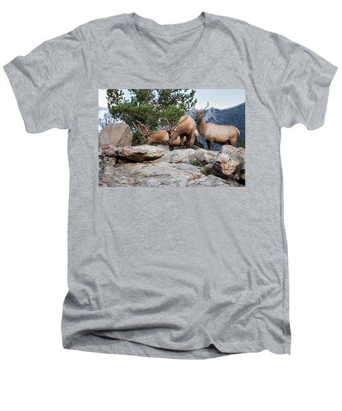 Wapiti Men's V-Neck T-Shirt