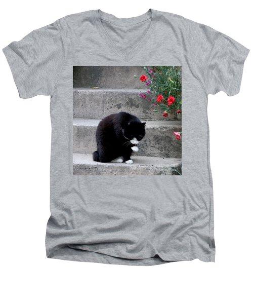 Washing Up Men's V-Neck T-Shirt by Lainie Wrightson
