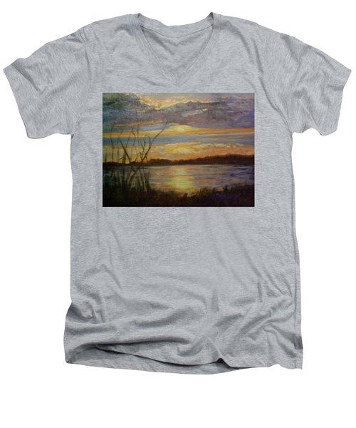 Wetland Men's V-Neck T-Shirt