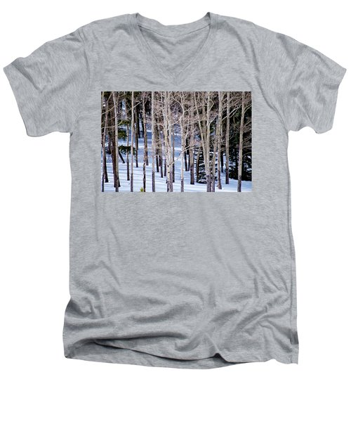 Men's V-Neck T-Shirt featuring the photograph Winter Aspens by Colleen Coccia