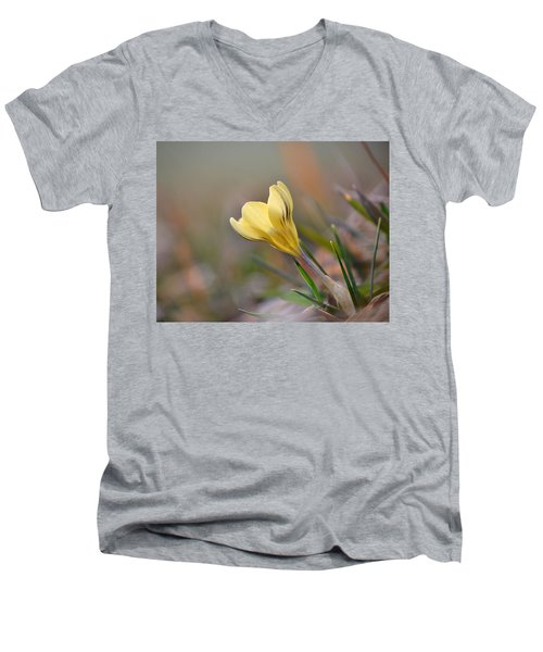 Yellow Crocus Men's V-Neck T-Shirt