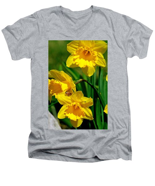Men's V-Neck T-Shirt featuring the photograph Yellow Daffodils And Honeybee by Kay Novy