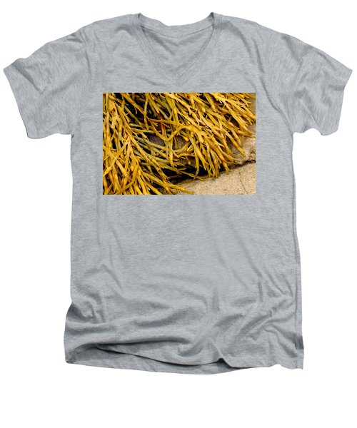 Yellow Kelp Men's V-Neck T-Shirt by Brent L Ander