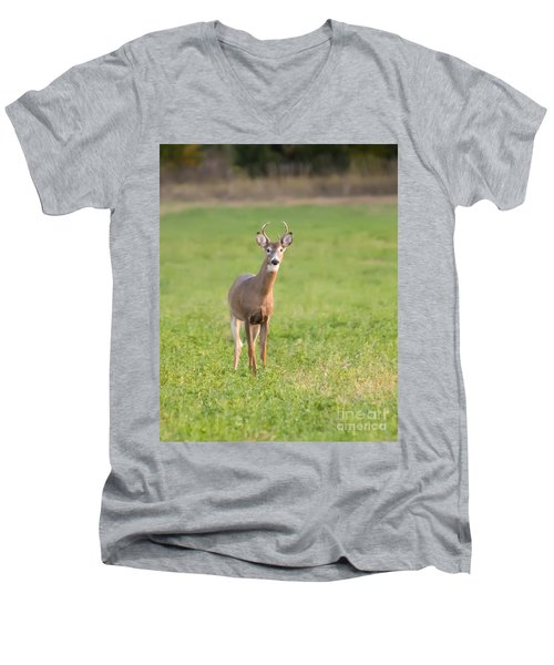 Young Buck Men's V-Neck T-Shirt