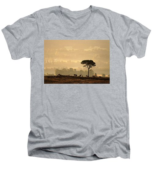 Autumn Morning, Strathglass Men's V-Neck T-Shirt