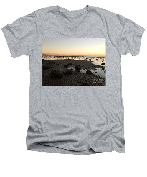 Beach Rocks Barnacles And Birds Men's V-Neck T-Shirt